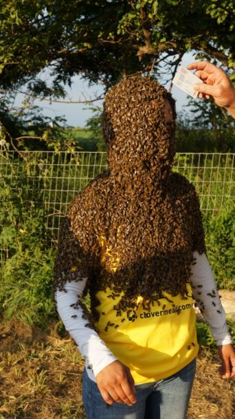 Canada Ontario Photos :: Aylmer :: 10th Annual Clovermead Bee Beard contest in Aylmer