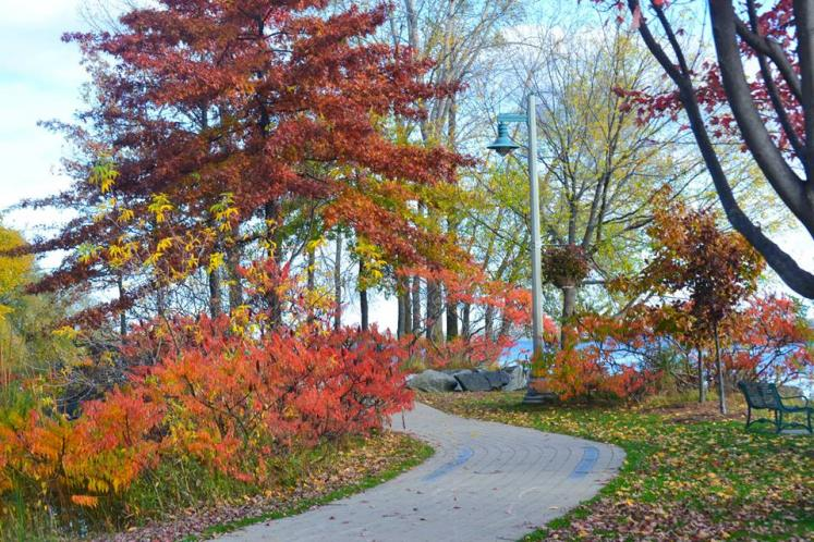Canada Ontario Photos :: THERESA :: Belleville. Memory Lane Fall lovely colour