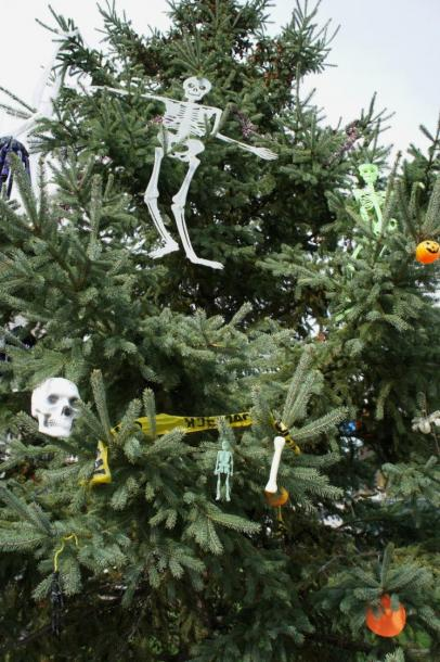 Canada Ontario Photos :: Halloween  :: Halloween Christmas Tree Elora