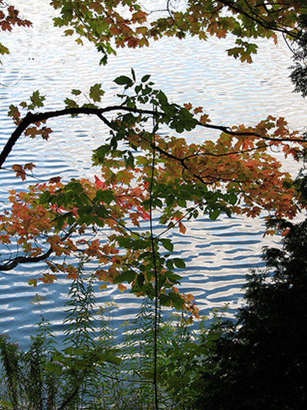 Canada Ontario Photos :: Crawford Lake Park :: Ontario. Crawford Lake