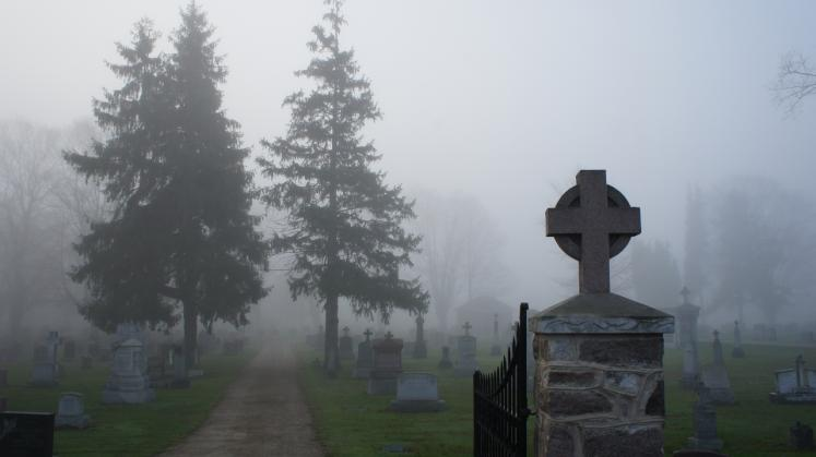 Canada Ontario Photos :: New Hamburg :: Early Morning Fog in Riverside Cemetery New Hamburg