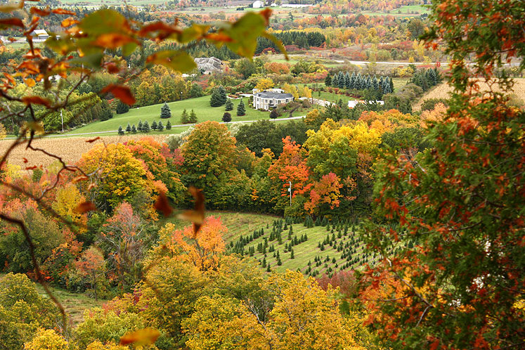 Canada Ontario Photos :: Rattlesnake Point :: A view from the Rattlesnake Point
