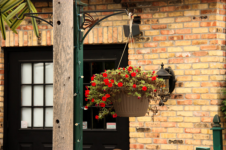 Canada Ontario Photos :: Richmond Hill :: A fragment of London Pub in Richmond Hill