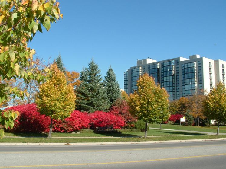 Canada Ontario Photos :: Richmond Hill :: Ontario. Richmond Hill. Fall colors