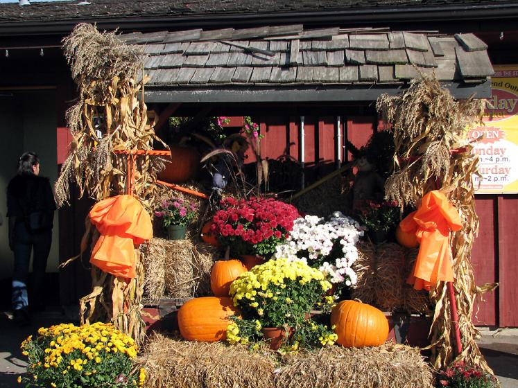 Canada Ontario Photos :: St. Jacobs :: St. Jacobs - fall decorations