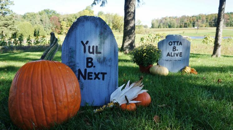 Canada Ontario Photos :: Waterloo :: Nauman´s Pumpkin Patch St.Clements. Halloween decorations.