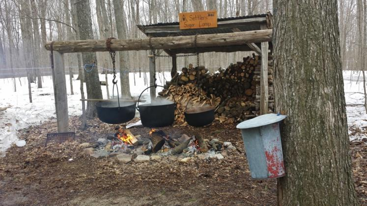 Canada Ontario Photos :: Waterloo :: Old Fashion Method of Maple Syrup at Martins Farm, Waterloo